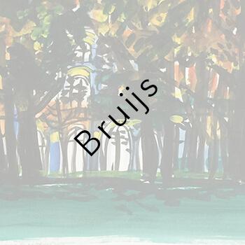 Fons Bruijs Artis AquArtis Gallery Amsterdam